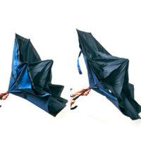 逆さに開く二重傘 circus(サーカス)